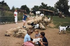 france_-1987-ea372cf6993a8afdf7e2d3af80b254955a243dd2